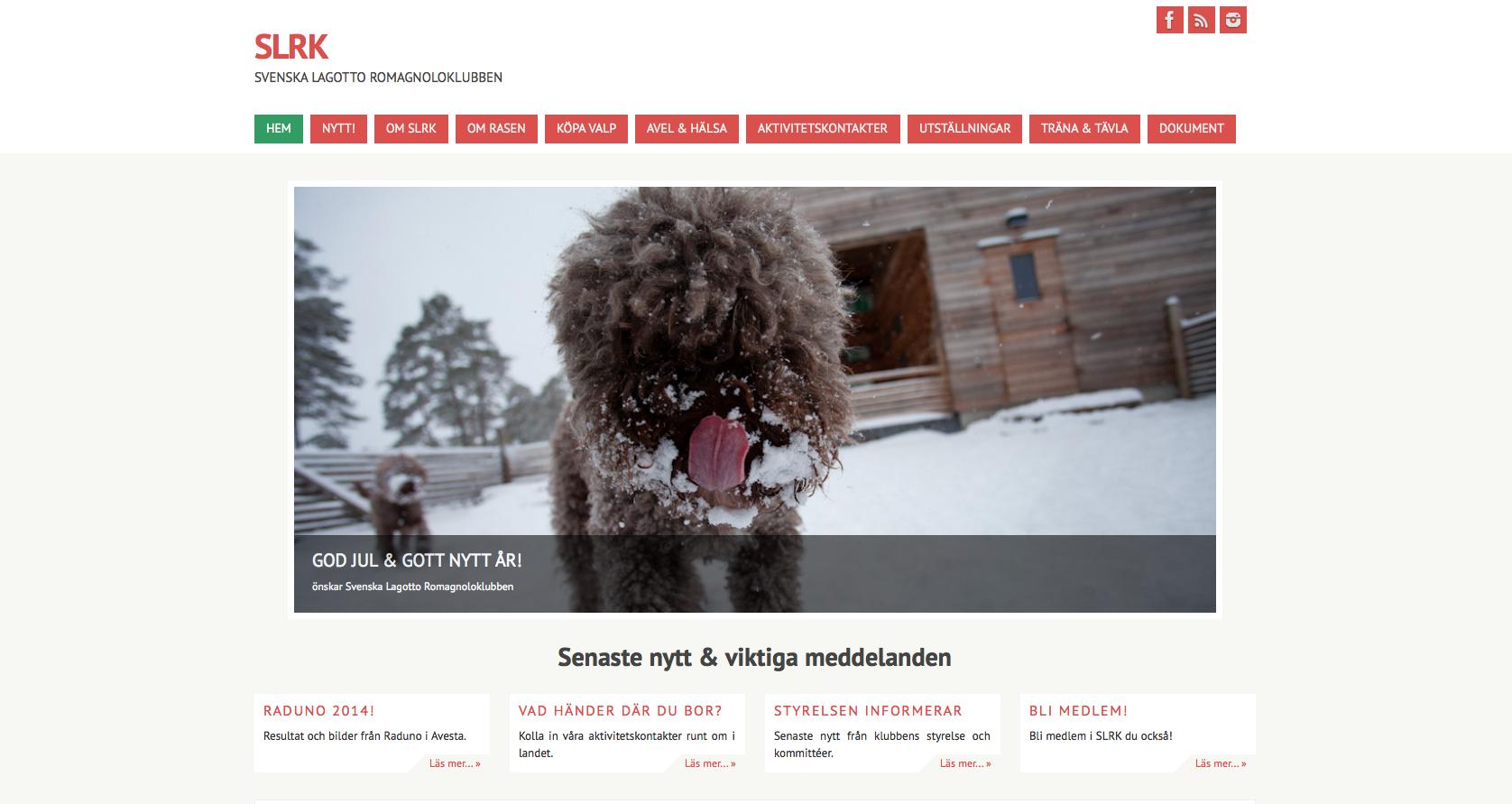 ny hemsida